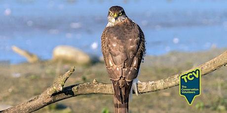 Bird Surveying Workshop - TCV The Paddock tickets