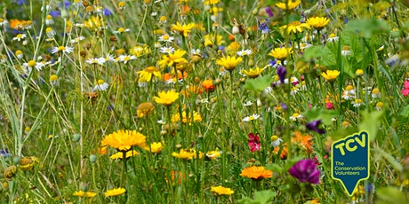 Plant Surveying Workshop - TCV The Paddock tickets