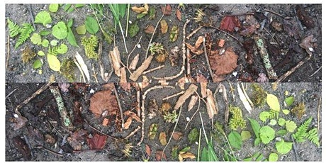 Autumn Environmental Art Session tickets