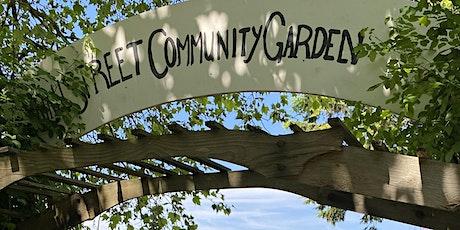 NEIGHBOURHOOD FOOD WEEK: Community Garden Walking Tour tickets