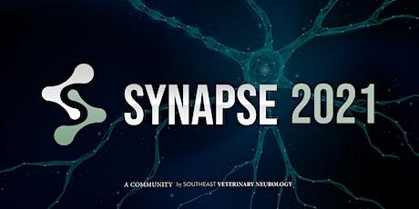 SEVN Synapse Conference 2021 tickets