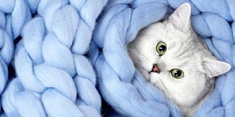 Cats & Cozy Blanket Making tickets