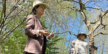 NEIGHBOURHOOD FOOD WEEK: Indigenous and Wild Plant Walk tickets
