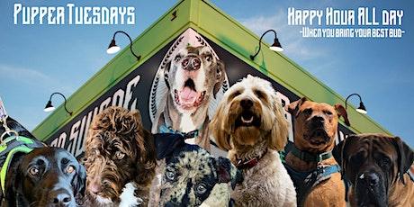 Pupper Tuesdays tickets