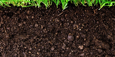 Getting to Know Your Soil - Part 1