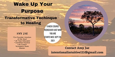 Wake Up your Purpose  Transformative Techinque to Healing tickets