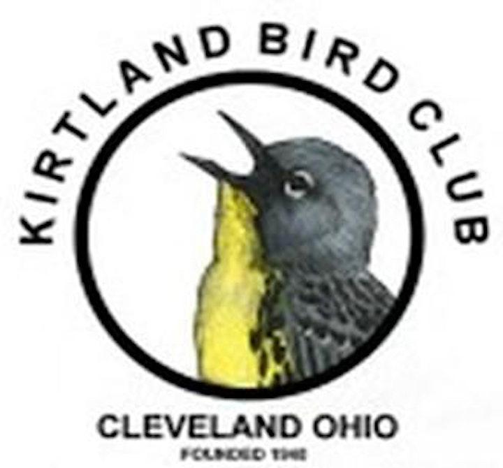 Kirtland Bird Club presents: Plants for Birds and Pollinators image