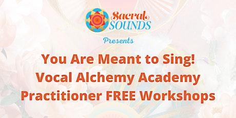 Vocal Alchemy Practitioner FREE Workshops entradas