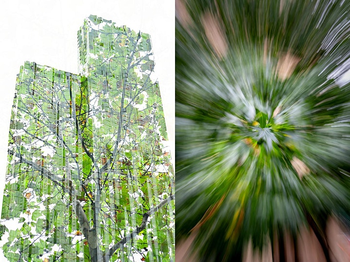 Creative Z-Series Photography with Mieke Boynton image