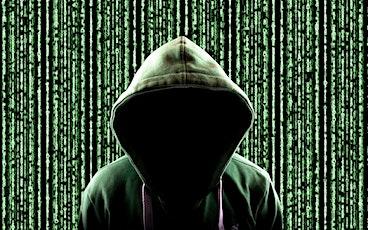 Les délits sur le Net- Pièges et règles à connaître pour soi et pour autrui billets