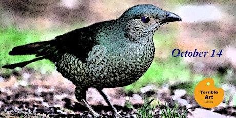 October TERRIBLE ART : Birds of Coffs Coast tickets
