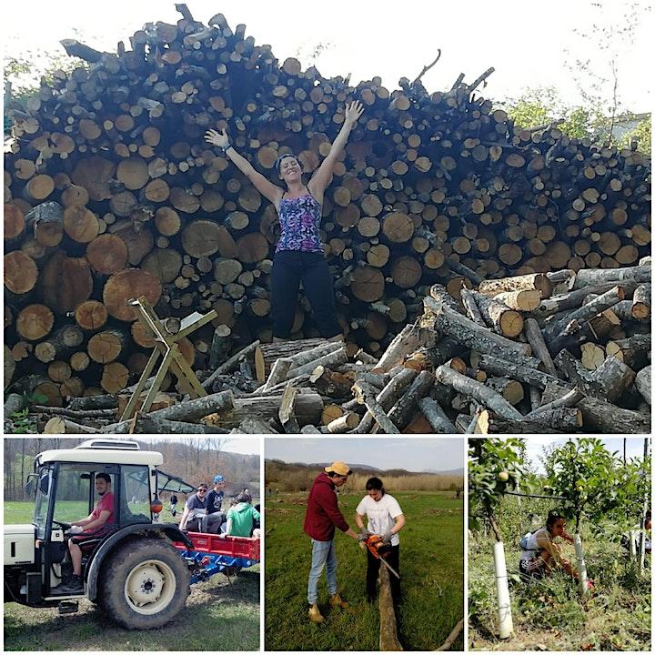 Immagine Borgotaro e la nostra esperienza di volontariato -  Operazione Mato Grosso