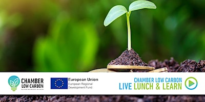 Chamber Low Carbon LIVE Lunch and Learn  – Carbon Offsetting
