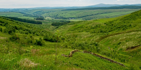 Moffat 2021 - Walk with the Borders Forest Trust - Devil's Beef Tub tickets