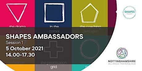Shapes Ambassadors- Session 1 tickets