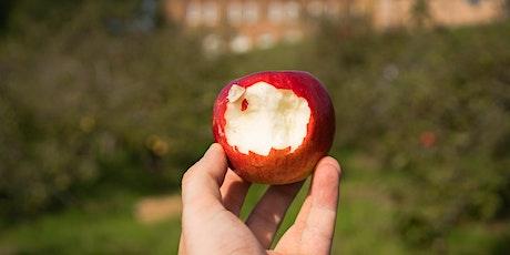 Apple Harvest at Bethlem Royal Hospital - 21st September (London) tickets