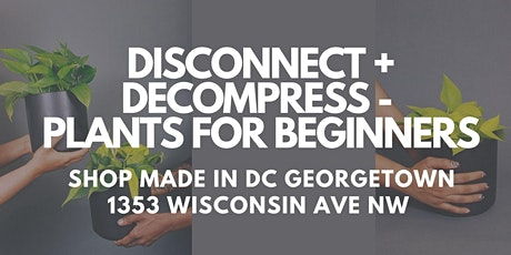 DISCONNECT + DECOMPRESS - PLANTS FOR BEGINNERS tickets