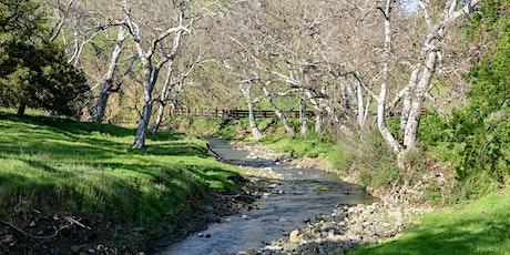 Curry Canyon Ranch Mt. Diablo Audubon Hike tickets
