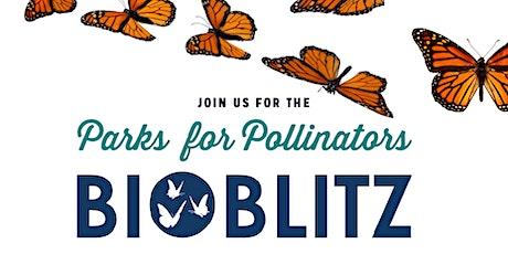 Parks for Pollinators BioBlitz @ Eddie Souza Park tickets