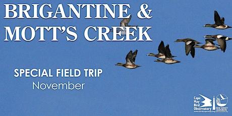 Brigantine and Mott's Creek tickets