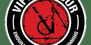 VIPER 2 FOUR 2015 (TEAM)