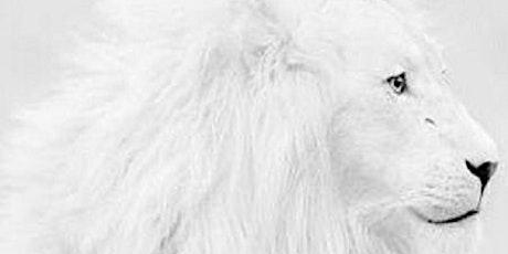 Pour & Paint White Lion on Black Canvas tickets