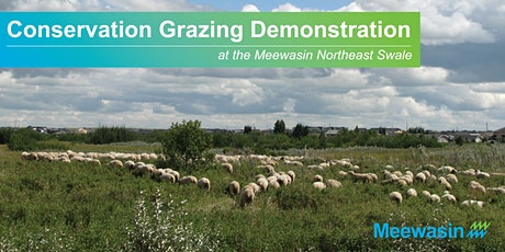 Sheep Grazing Demonstrations at the Northeast Swale tickets