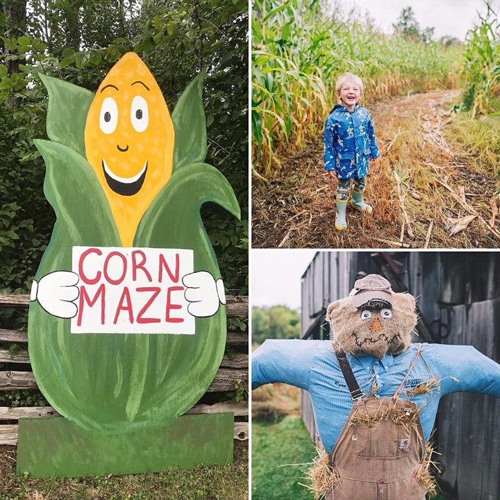 Bushels of Fun Down on the Farm image