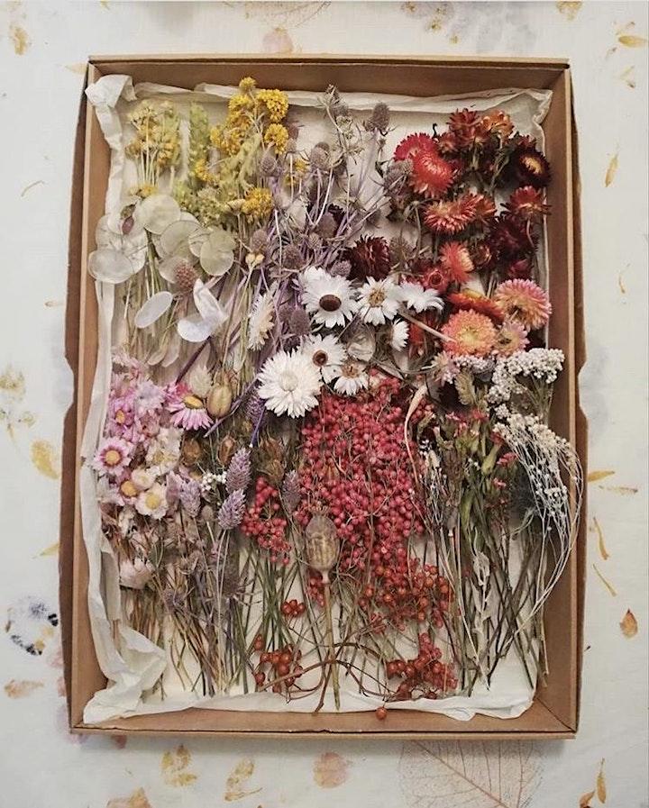 Afbeelding van Hutspot Amsterdam x Tuin van Judith