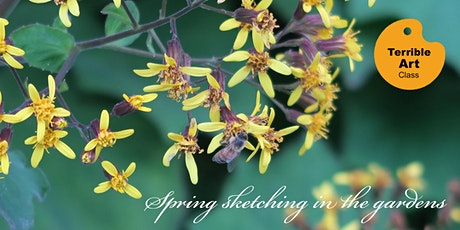 SPRING sketching in the gardens tickets