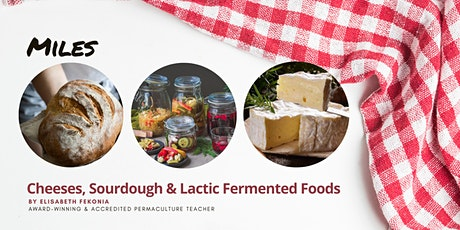 Cheese, Sourdough & Lactic Fermented Foods Workshops -  Miles tickets