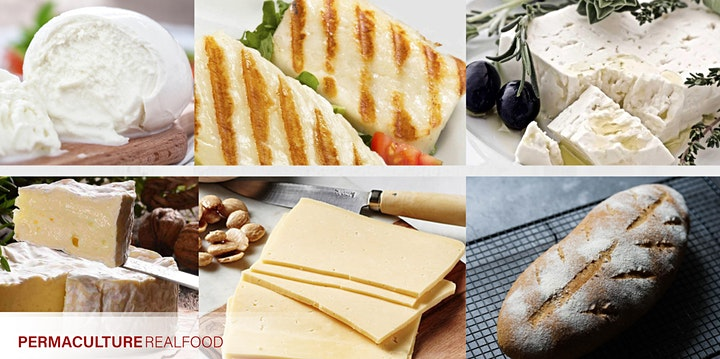 SOLD OUT-Cheese, Sourdough & Lactic Fermented Foods Workshops image