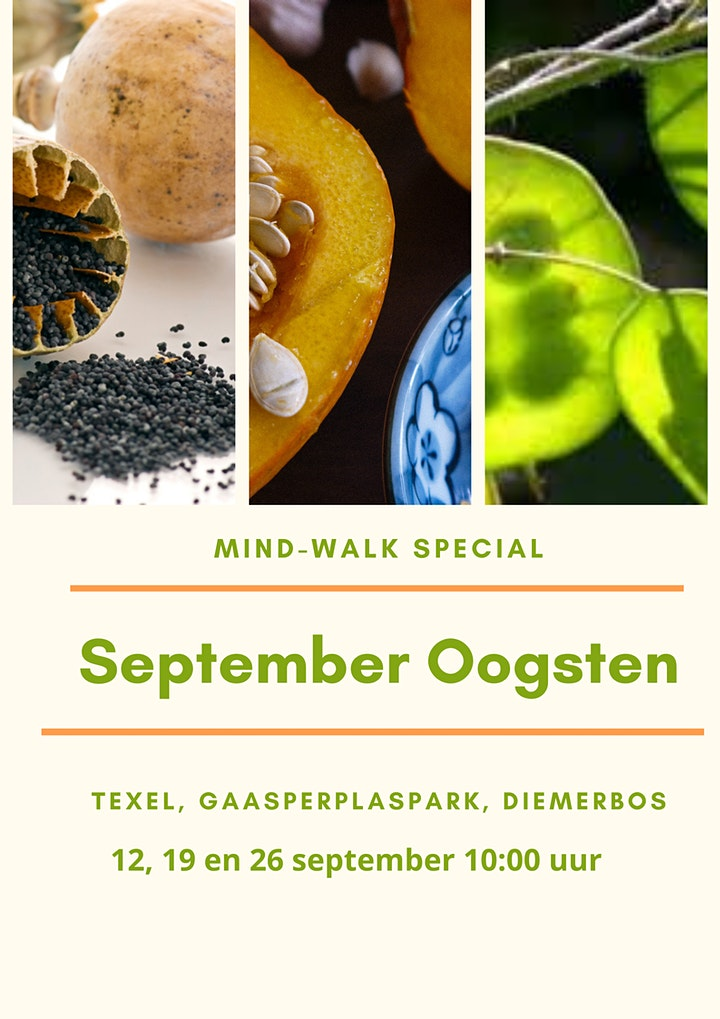 September Oogsten Mind-Walk Special image