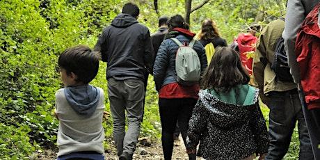 Festival ForadCamp - Excursió pel Parc Natural del Montseny entradas