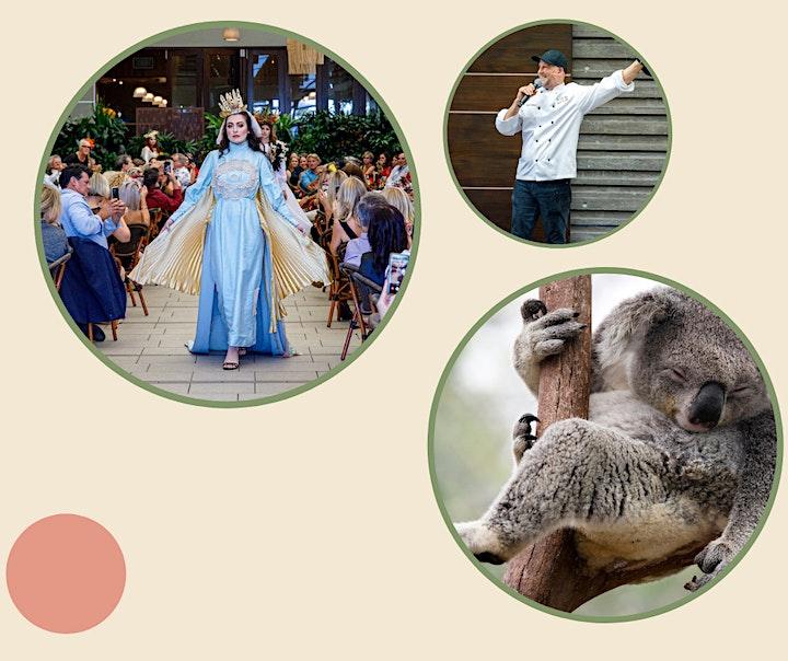 Noosa Biosphere Wild Koala Gala 2021 image