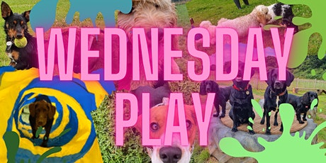 Wednesdays 5pm - Small & Medium Playtime tickets