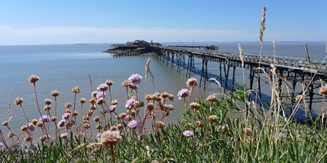 Coastal Plants of Somerset tickets