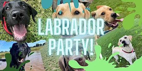 Labrador Party! tickets