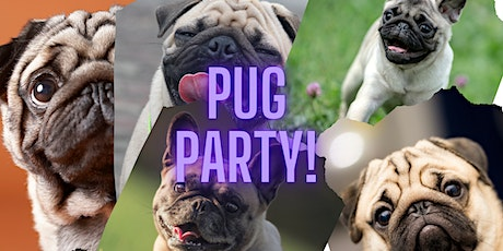 Pug Party! tickets