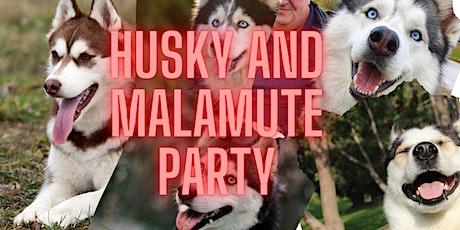 Husky & Malamute Party! tickets