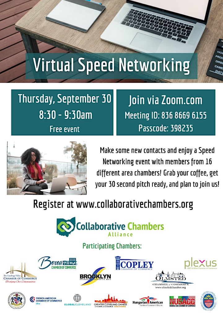 Virtual Speed Networking image