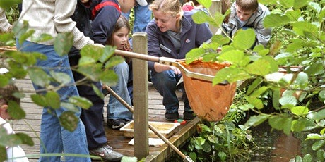 Dyke Dipping at NWT Hickling Broad (EDU BROADS) tickets