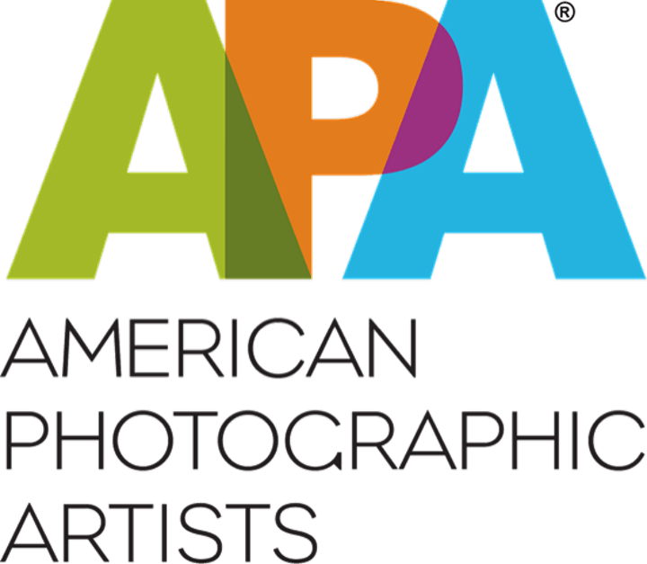 PROJECTIONS - APA Awards image