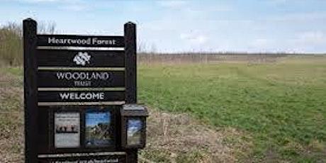 Twilight bird-spotting walk in Heartwood Forest tickets