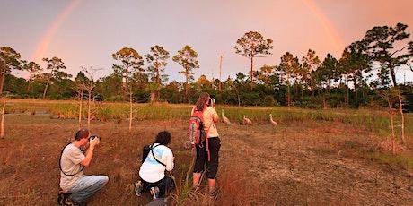 Adventure Awaits - Migratory Birds Photo Workshop @ Juno Dunes Natural Area tickets