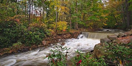 Laurel Highlands Conservation Landscape Annual Gathering 2021 tickets