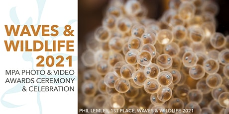 Waves & Wildlife 2021 —Virtual Awards Ceremony & Celebration tickets