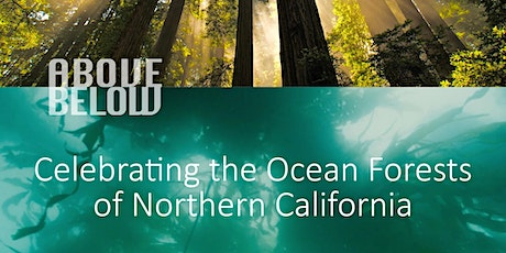 Above/Below Launch Event - Celebrating the Ocean Forests tickets