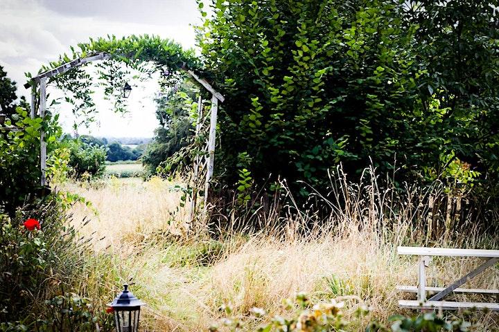 Hiraeth Back to Nature image
