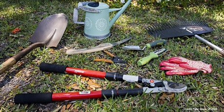 Garden Tasks that Wow in 15 minutes: A Webinar Series (Use Zoom Link) tickets